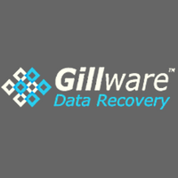 B2B Company Gillware Data Recovery in Madison WI
