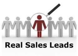 What Is a Business-to-Business Sales Lead?