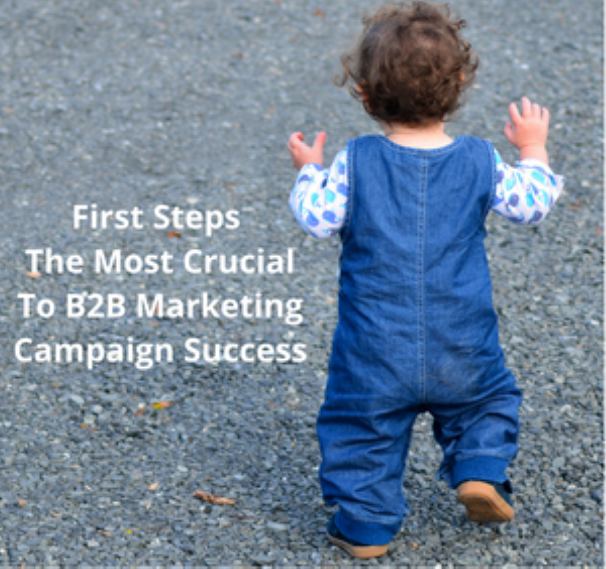 Why B2B Marketing Campaign First Steps Are the Most Crucial To Success