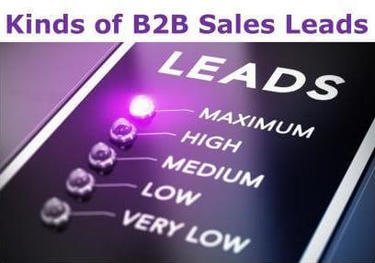 Kinds of B2B Sales Leads
